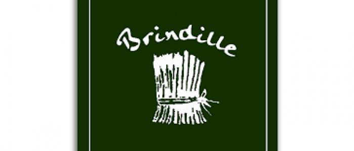 logo brindille